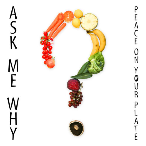 Ask Me Why cover